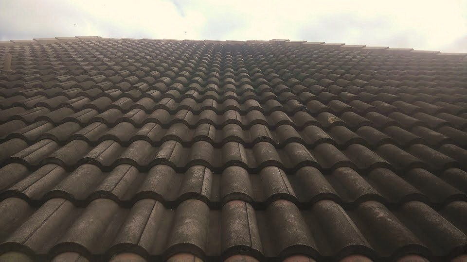 Roof Mold Is No Match Against Our Soft Wash System Commercial U0026 Residential  Shingle, Tile, Metal Roof Cleaning