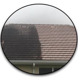 A-1 Pressure Washing & Roof Cleaning | Pressure Cleaning